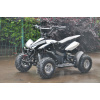 Black Kids 36v 500w Electric ATV Quad Bike