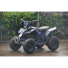 Kids Ride on 36v 1000w Electric ATV Quad Bike - Blue