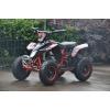 350w Electric Ride on ATV Quad Bike - Red